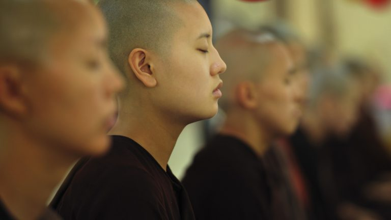 Buddha Buddhist Meditation Meditere