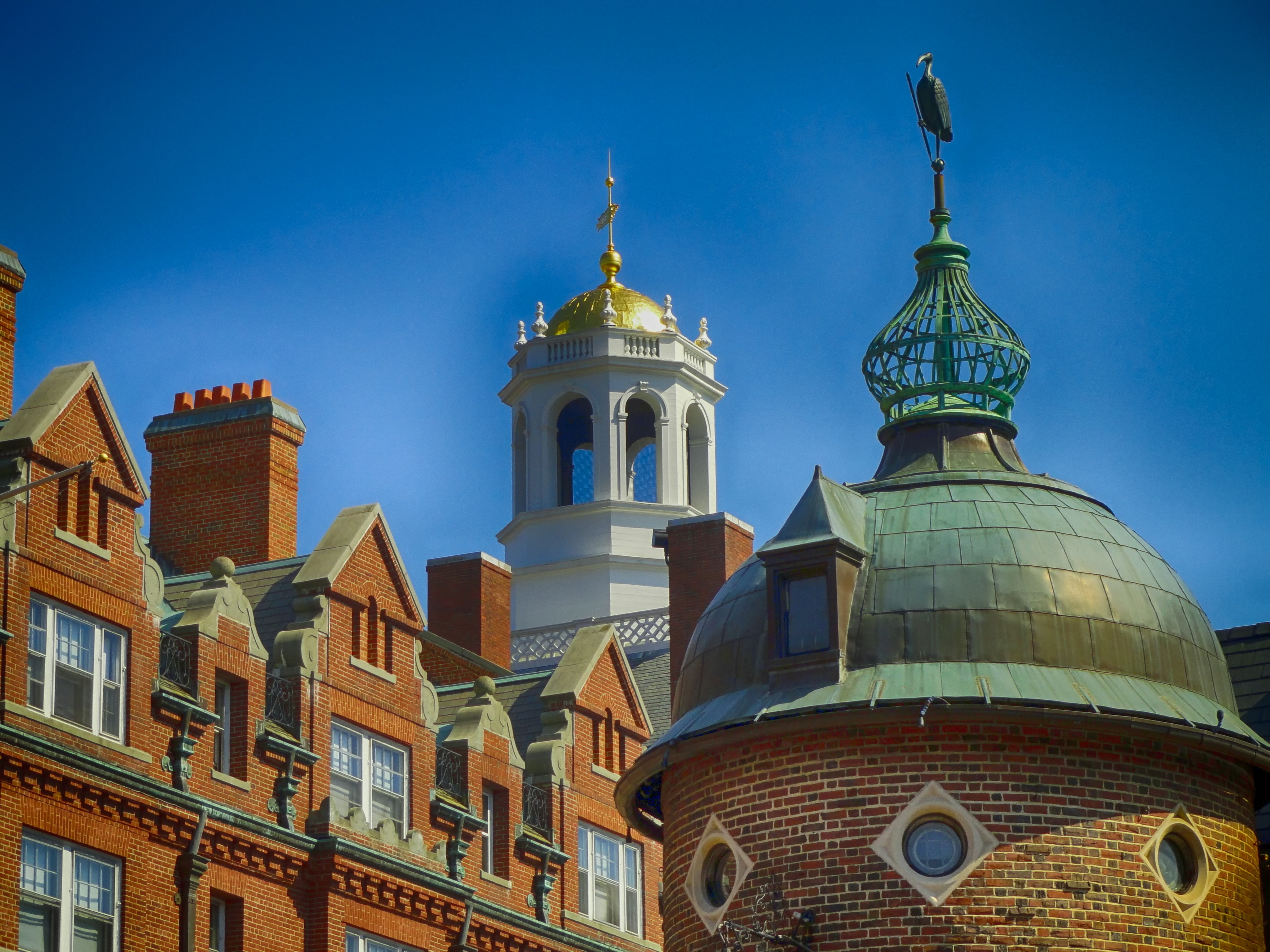 Harvard Universitet Uddannelse